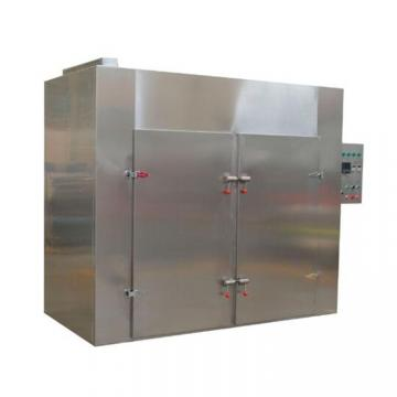 Small Capacity Homehold Vacuum Food Freeze Dryer for Fruits Vegetables