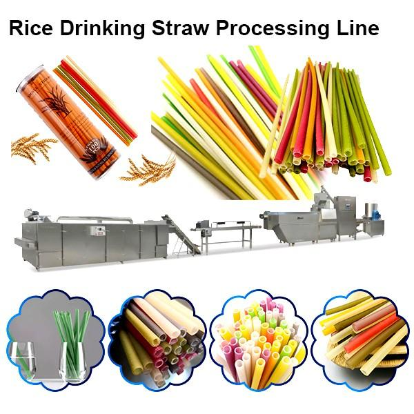 Single Screw Extruder Multi-Function Degradable Straw Rice Straw Pasta Making Machine #1 image