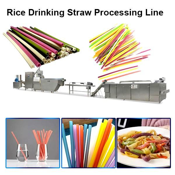 Stainless Steel Full Automatic Degradable Straw Machine Rice Straw Machine in Vn #1 image