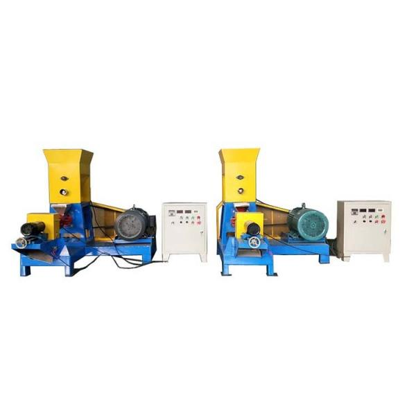 Big Output Automatic Floating Fish Feed Pellet Extruder #1 image